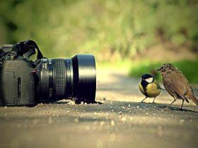 ترفندهای عکاسی حرفه ای